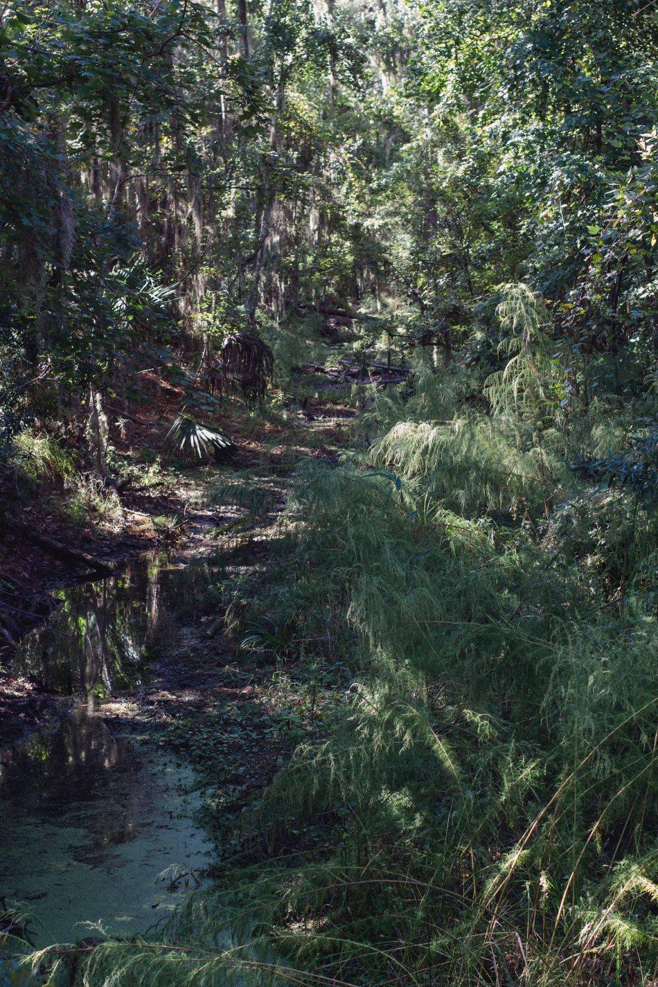 Trail (5 von 35)